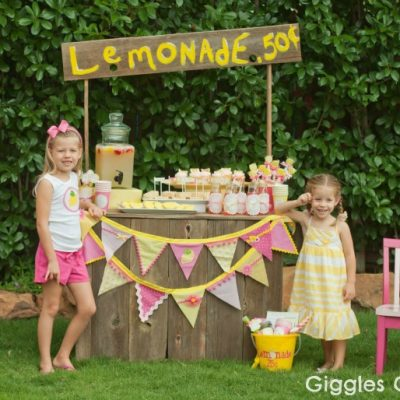 Lemonade Stand Party with DIY Lemonade Stand Kits