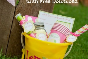 Make Your Own Lemonade Stand Bucket_Free Dowload