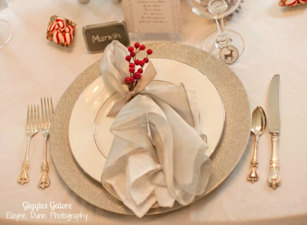 Winter wonderland place setting
