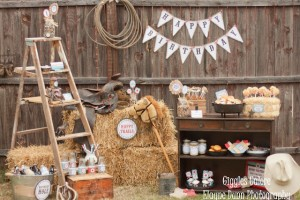 Country Westerncowboy Birthday Party Suppliescreate Birthday Party
