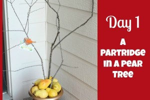 12 Days of Christmas Service: {Day 1} A Partridge in a Pear Tree