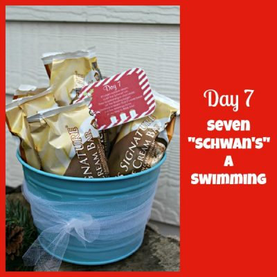 12 Days of Christmas Service {Day 7} Seven Schwan's a Swimming