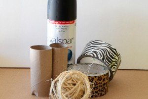 DIY Safari Binoculars_Supplies