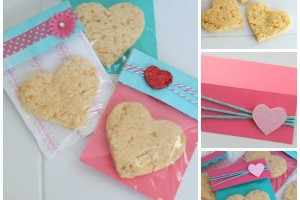 A blissful nest valentines day treat bag 001