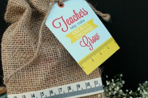 Teacher Appreciation Gift and Free Printable Tag