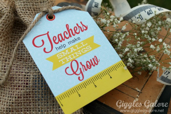 Teacher appreciation gift teachers help make small things grow tag
