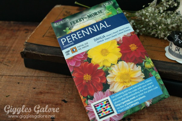 Teacher appreciation gifts flower seeds