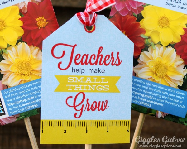 Teachers help small things grow tag