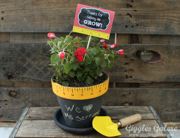 Teacher appreciation gift flower pot
