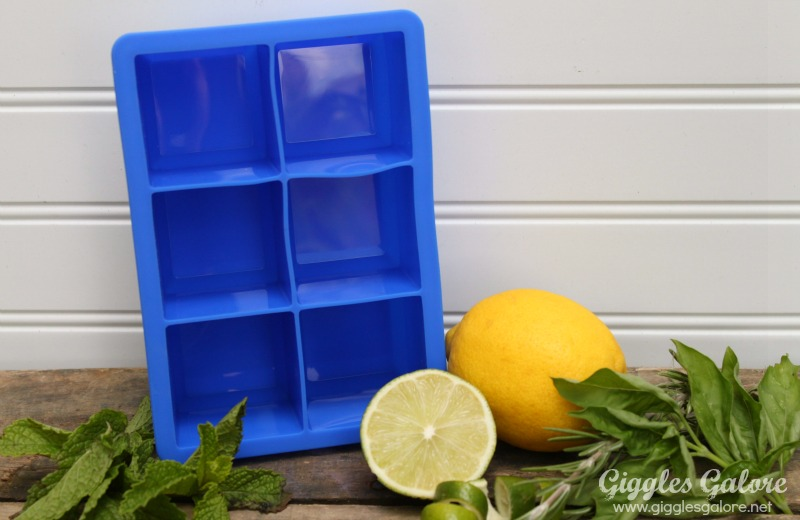 Herb infused ice cubes colossal cube tray