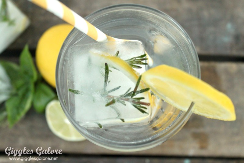 Water with herb infused ice cubes1