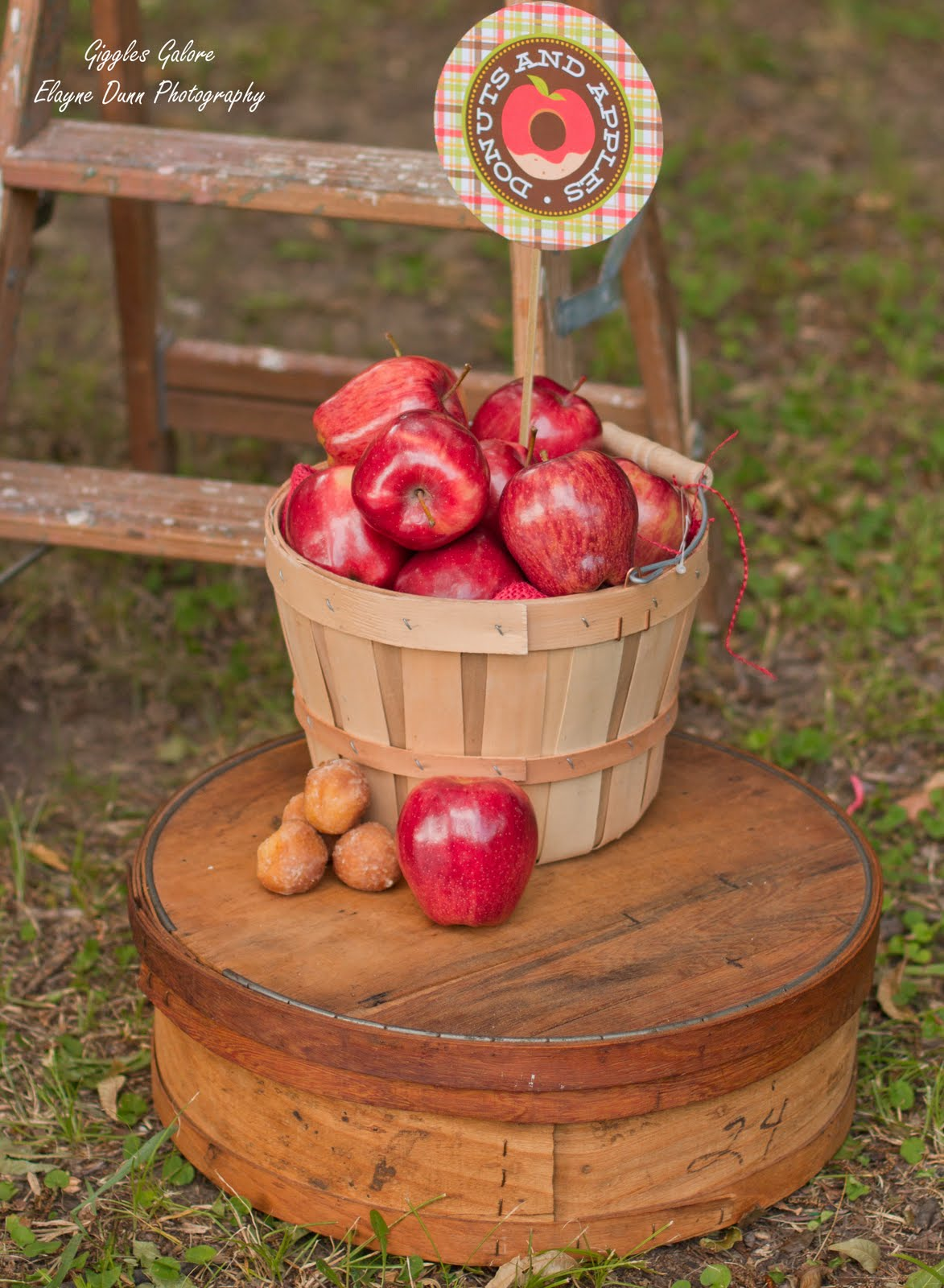 apples and donut back to school party