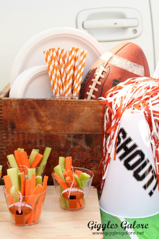 Football Tailgate Party Supplies