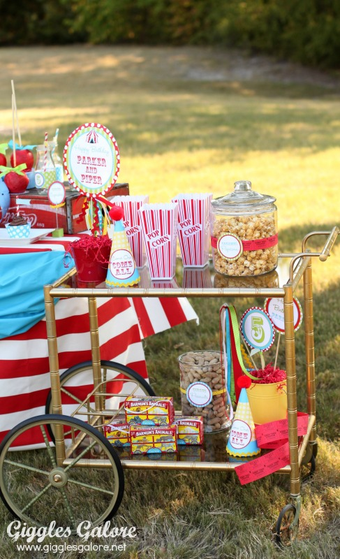 Giggles Galore Circus Party Popcorn Cart