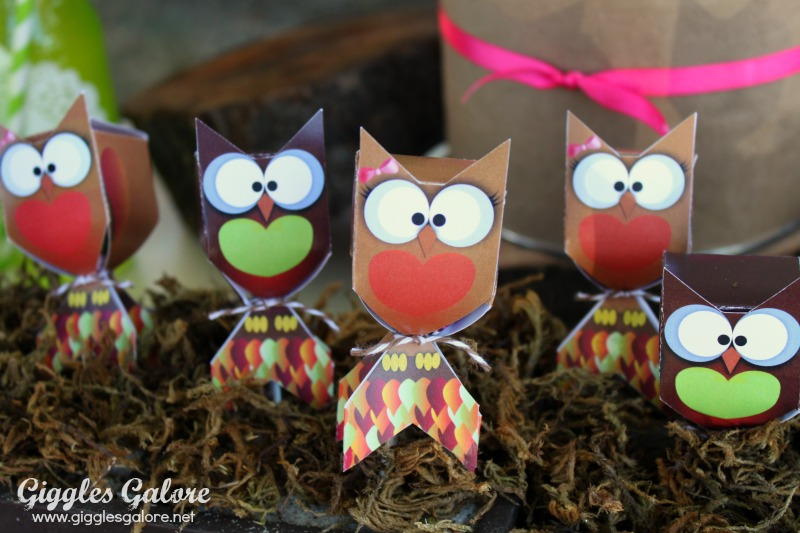 Owl Lollipop Covers