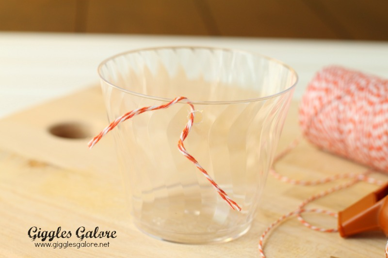 Tailgate Party Cups with String