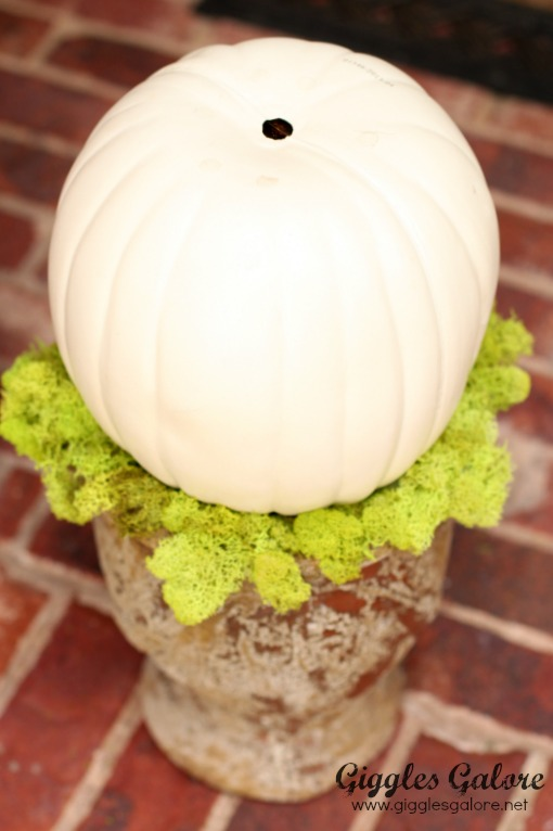 Building Custom Pumpkin Topiary