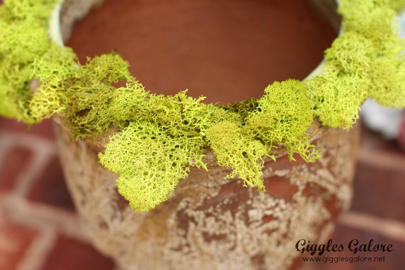 Custom Pumpkin Topiary by Giggles Galore