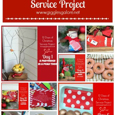 12 Days of Christmas Service Project