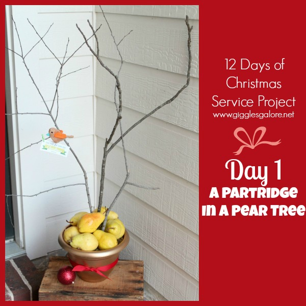 Giggles Galore 12 Days of Christmas Service Project Day 1