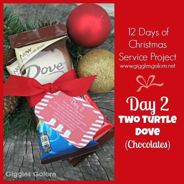 Giggles Galore 12 Days of Christmas Service Project Day 2