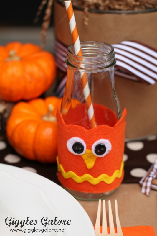 Owl Drink Covers