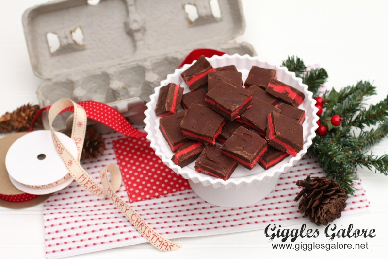 Peppermint Fudge Christmas Gift