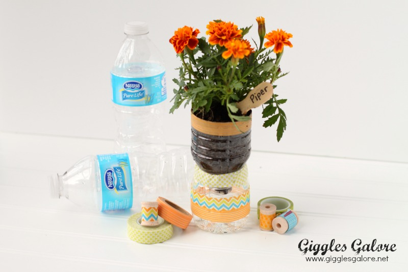Recycle Water Bottles into Planter