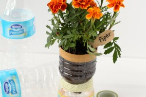 Recycled Water Bottle Planters