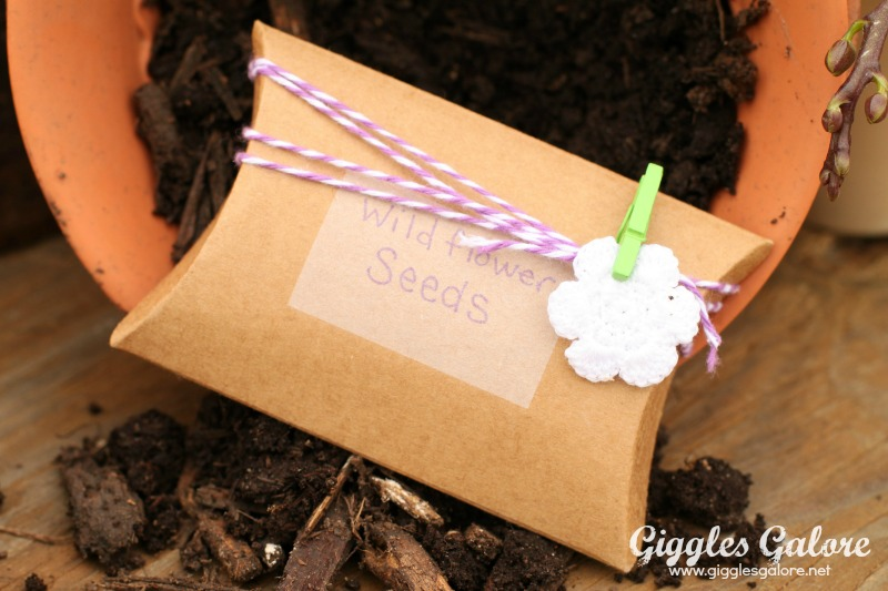 Spring Planting Party Wildflower Seeds Party Favor_Giggles Galore