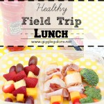 Healthy Field Trip Lunch Ideas