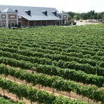 Grapevine Wine Tours