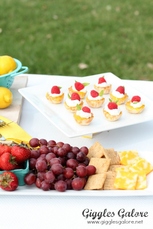 Picnic Fruit and Dessert