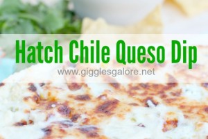 Hatch Chile Queso Dip by Giggles Galore