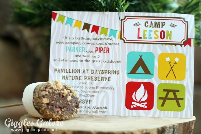 Twins Camping Themed Birthday Party - Giggles Galore
