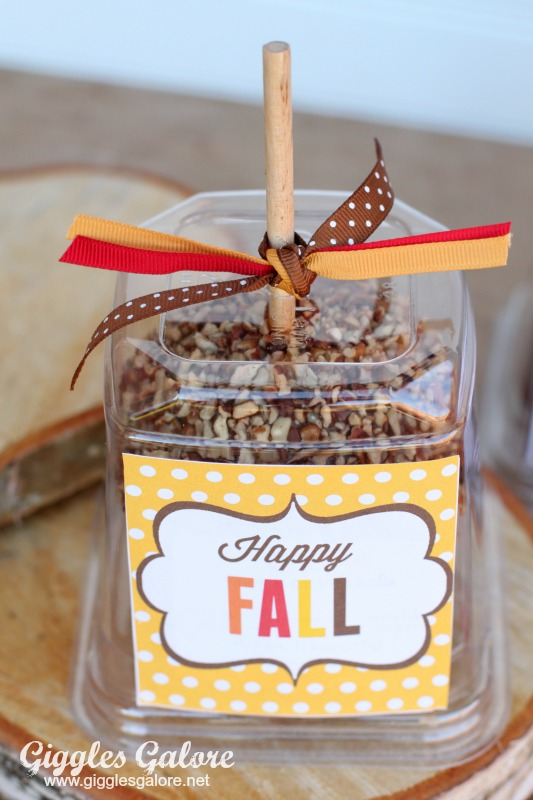 Happy Fall Caramel Apple with Ribbon