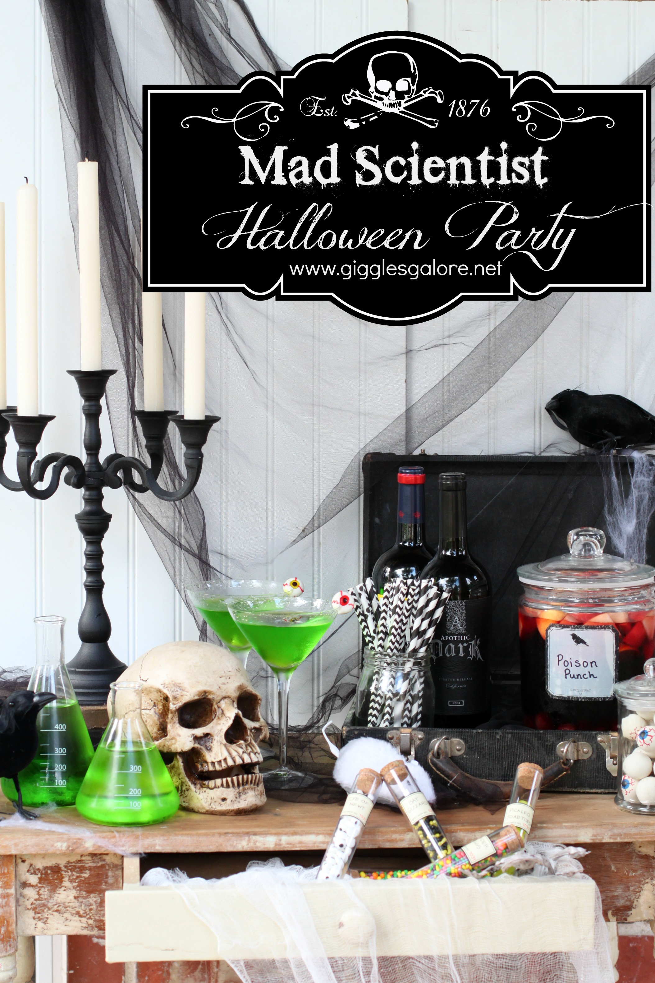 Halloween Mad Scientist Lab Decorations  from gigglesgalore.net