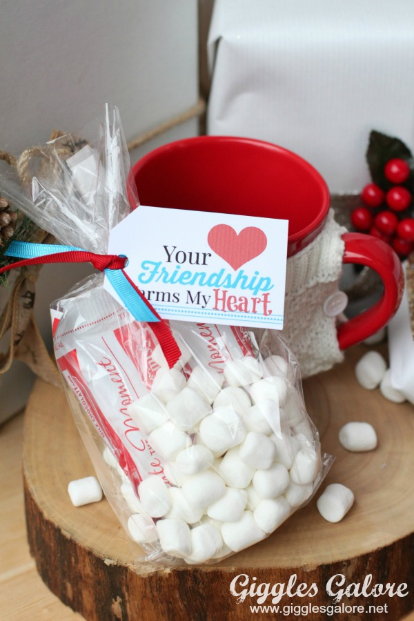 Friendship Mug Hot Cocoa Gift