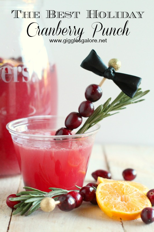 The Best Holiday Cranberry Punch_Giggles Galore