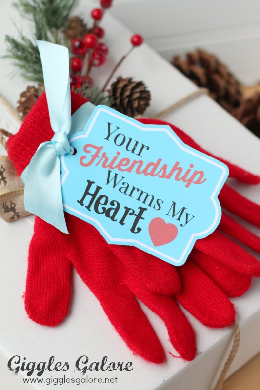 Your Friendship Warms My Heart Mitten Gift Wrap