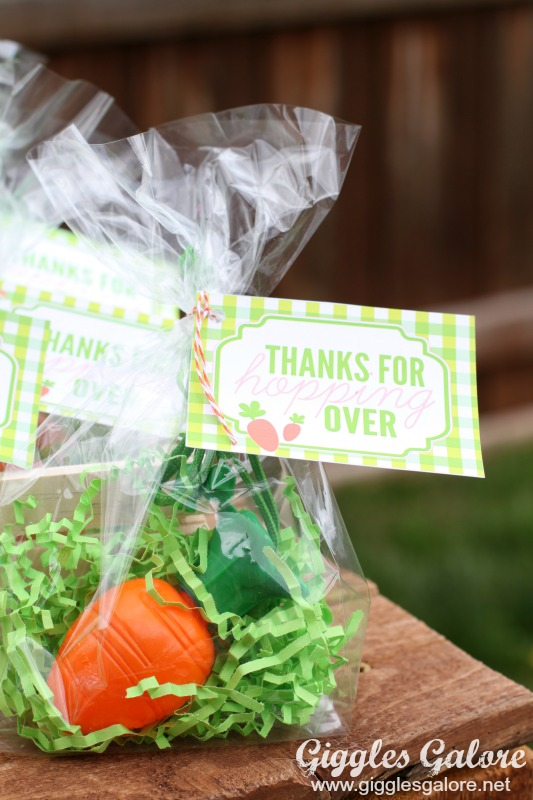 Carrot Bubbles Party Favor