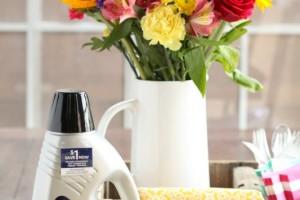 BISSELL Deep Clean Pro Febreze Formula
