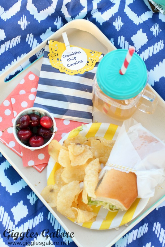 Perfect Picnic Tray