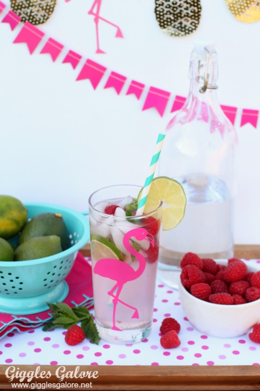 Raspberry Lemonade Mojito Mocktail