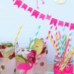 Raspberry Lemonade Mojito