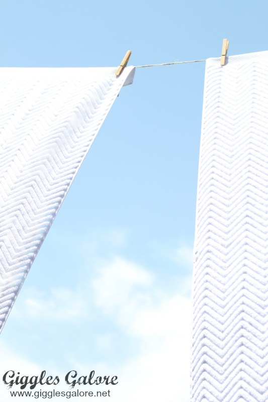 Clothesline Dry White Towels