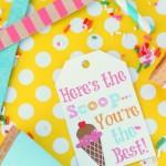Here's The Scoop Ice Cream Gift Basket