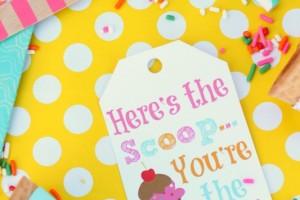 Ice Cream Scoop Tags