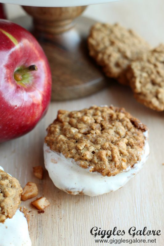 Apple Cinnamon Oatmeal Ice Cream Sandwich