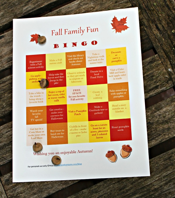 Fall Family Fun BINGO Printable